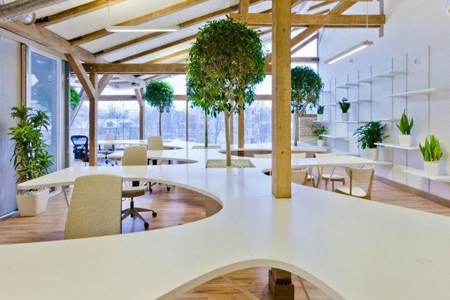 办公室有氧设计-绿色植物摆放-办公室装修设计