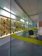 办公室绿化装饰方案