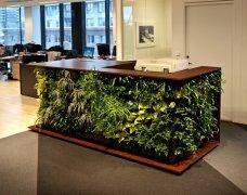 <b>办公室设计绝妙绿化装饰-春色满屋</b>
