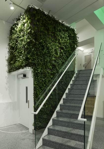 办公室设计绝妙绿化装饰-春色满屋