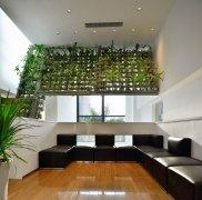 办公室绿植垂直种植系统设计