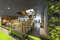 盆栽绿植在办公室装饰中的价值体现