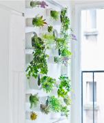 办公室绿植墙面盆栽设计布满了三千巧思