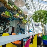 办公室绿植装饰搭配