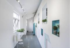 办公室绿植装饰设计