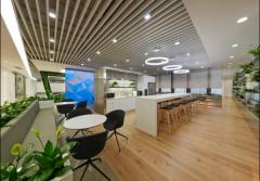 办公室大量绿植墙装饰设计